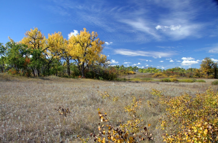 13. The sandhills at J. Clark Salyer National Wildlife Refuge in North Dakota.