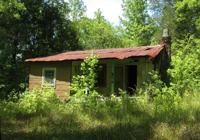 2. An abandoned cabin in Bibb County, Alabama.