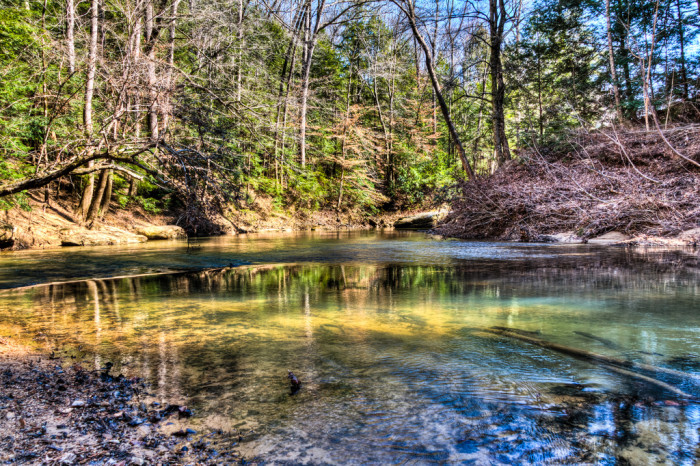 4. Sipsey Wilderness - William Bankhead National Forest / Mt. Hope, AL