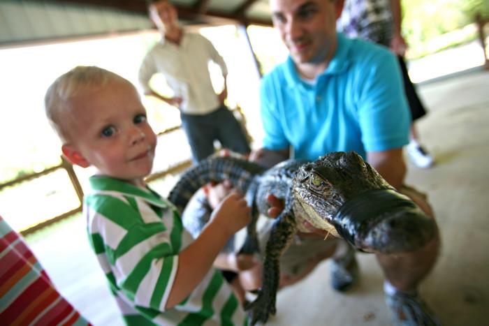 1) Alligator Park, Nachitoches, LA