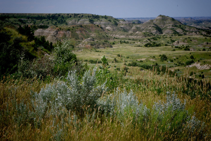 8. The badlands in Theodore Roosevelt National Park. It's hard to believe something this beautiful actually exists!