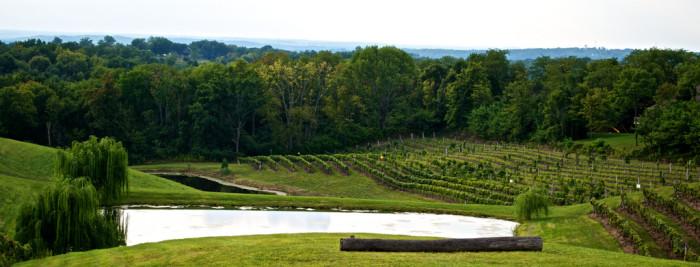 1) Vinoklet Winery (Cincinnati)