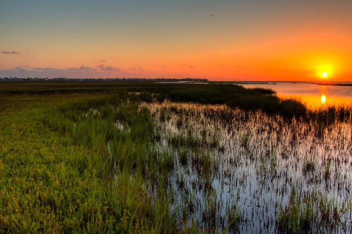 19) Galveston Island State Park (Galveston)