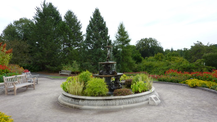 5.Or you could go to the landscape arboretum for more flowers and nature.