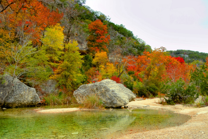 8) Lost Maples State Natural Area