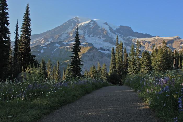 7. Nisqually Vista Trail