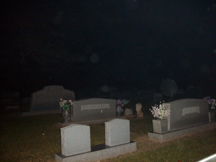 7. Palestine Cemetery