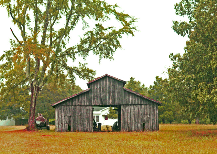 7. The beautiful greenery combined with this small Columbus farm make for quite the photo-op.