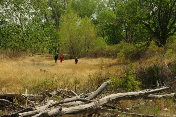 7.) Cedar Bluff State Park (Ellis)