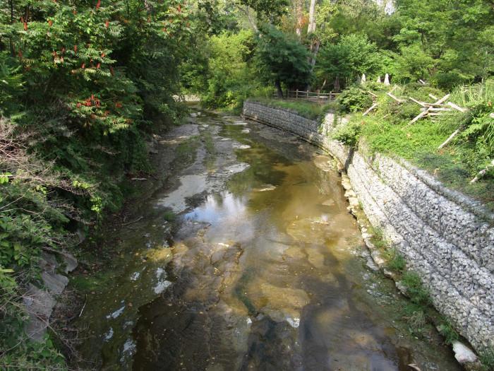 5) Lake County