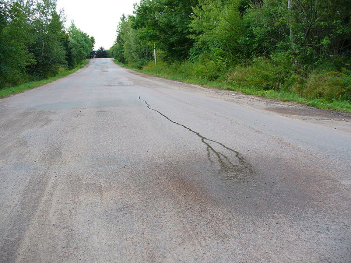 10. Your car will roll uphill on this ordinary-looking road in Bedford County.