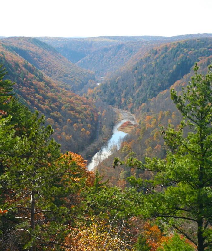 7. Pine Creek Gorge, Waterville