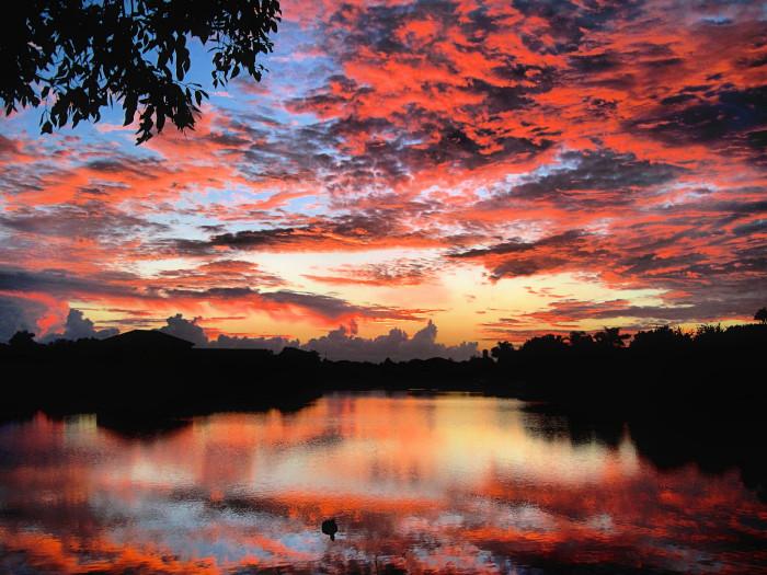 1. Miramar Sunrise