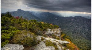 Explore The 4 National Forests Of North Carolina This Summer