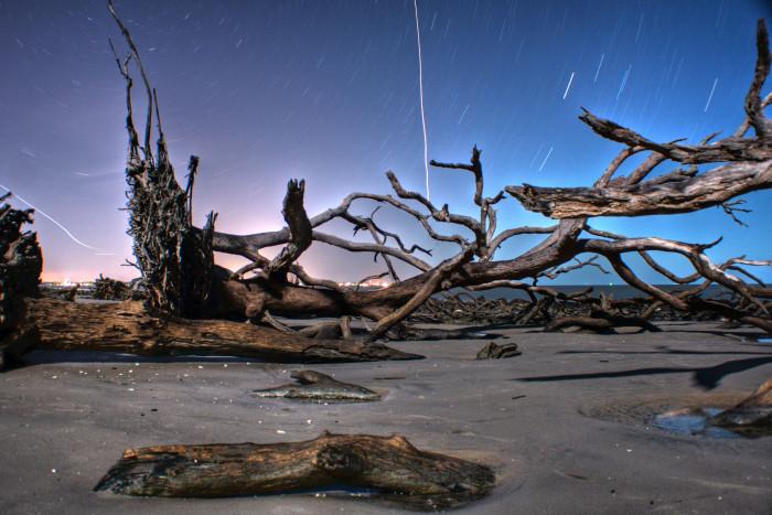 4) Driftwood Beach, Jekyll Island
