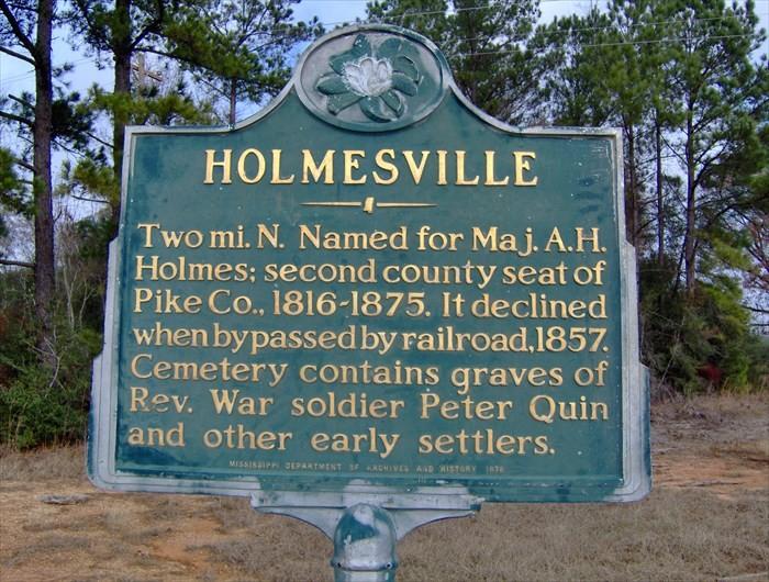 8. Holmesville