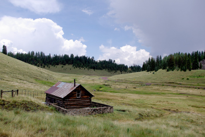 17. White Mountains in Apache-Sitgreaves National Forest