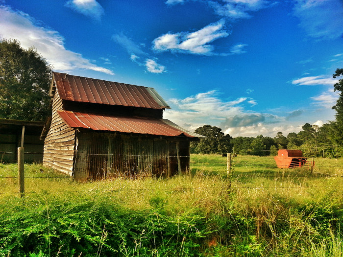 10) Barn & Cow Pasture in Brooks, GA