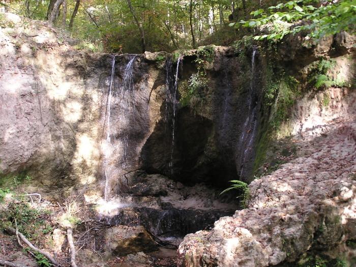 9. Clark Creek Nature Area, Woodville