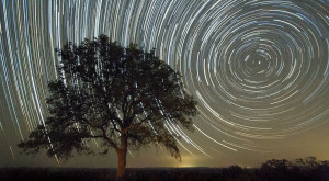 20 Photos Taken In Texas That You Won't Believe Are Real