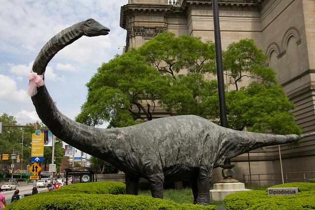 6. Carnegie Brontosaurus