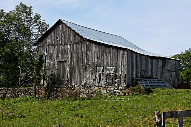5. The deteriorating boards that make up this barn create a gorgeous grey pattern that contrasts with the landscape.