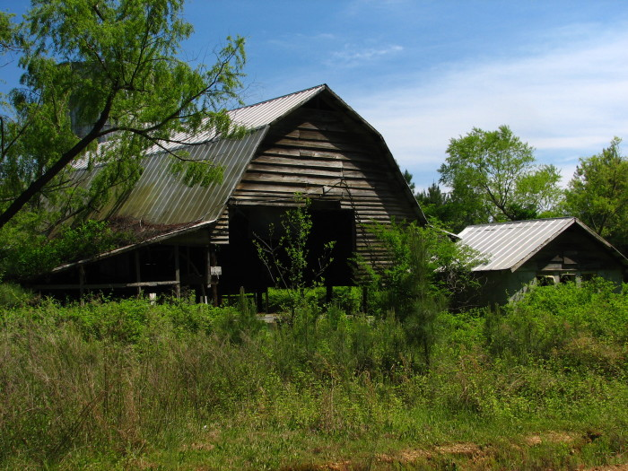 9. This practically overgrown farm is located near the Noxubee National Wildlife Refuge.