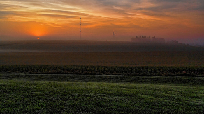9. This foggy field in Walnut, Iowa, is the perfect spot to watch the sun come up