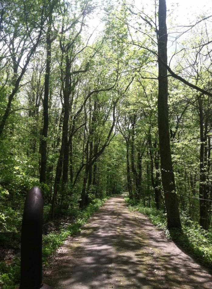 11. Monte Sano State Park - Huntsville, Alabama