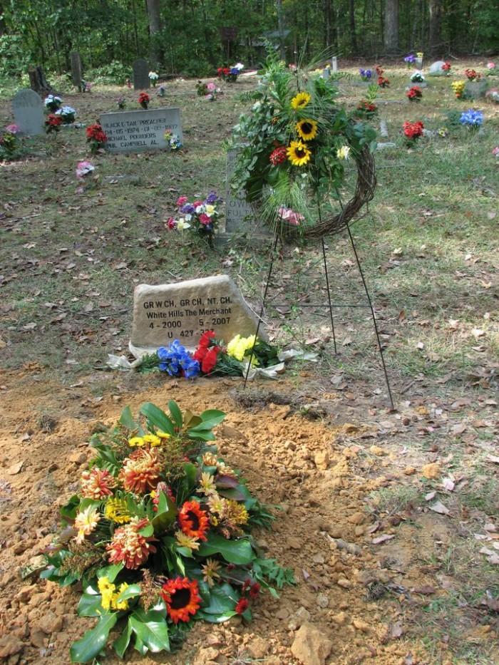 9. Coon Dog Cemetery - Cherokee, AL