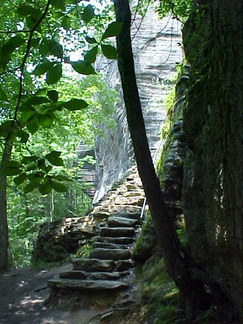7. Allegheny National Forest, Warren