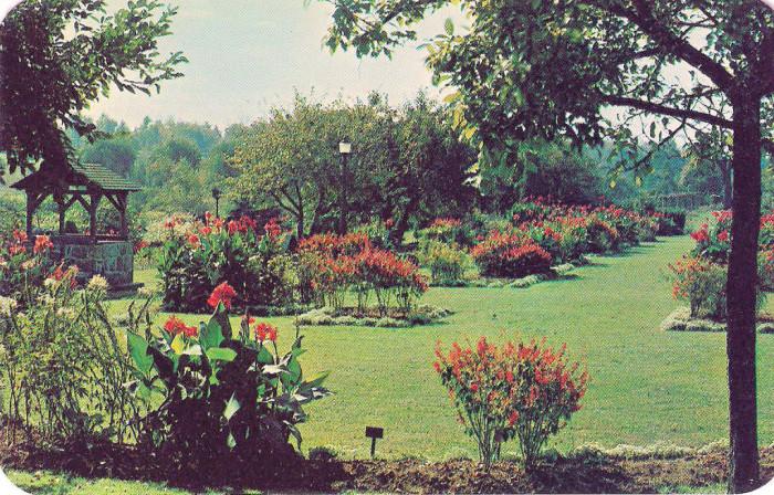3. The Rose Gardens, Allentown