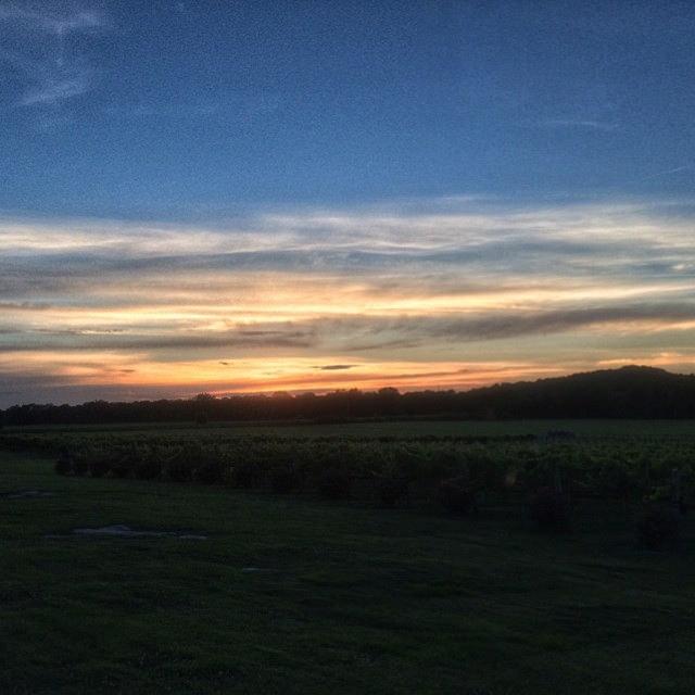 Arrington Vineyards - Arrington