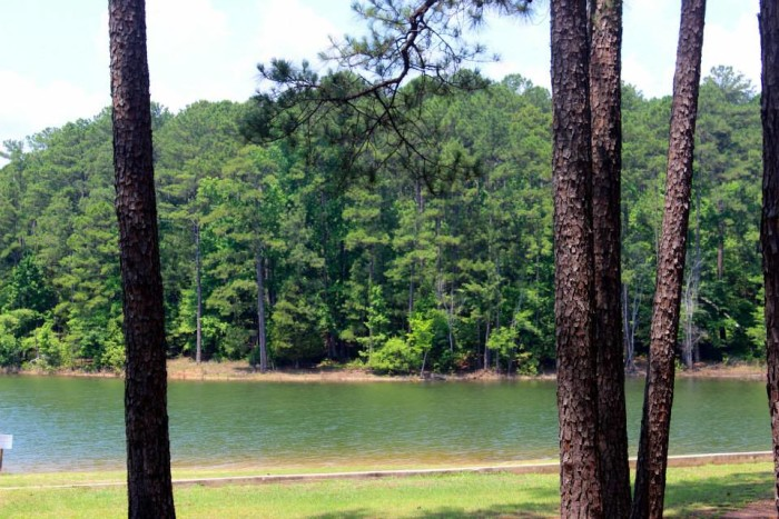 3. Baker Creek State Park, 863 Baker Creek RD McCormick, SC 29835 Phone: (864) 443-2457