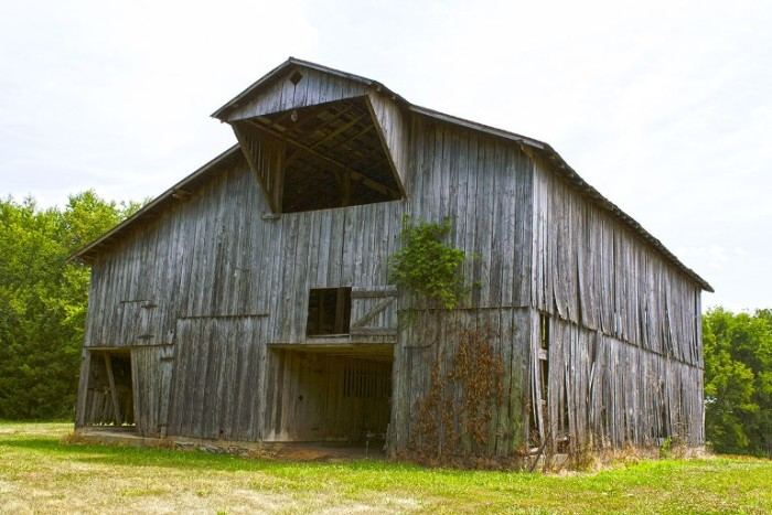 You Will Love With These 12 Beautiful Old Barns In Kentucky