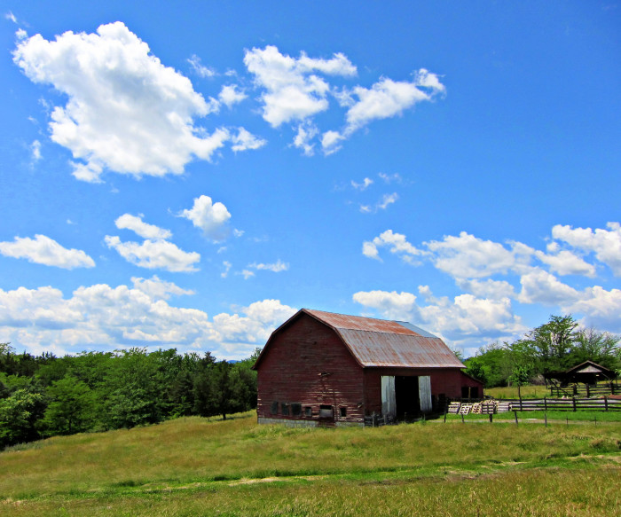 28. An old barn at Belle Grove Plantation