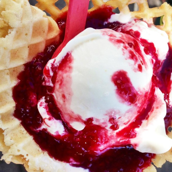 Seen here, a scoop of sweet cream ice cream, topped with fresh raspberry sauce.