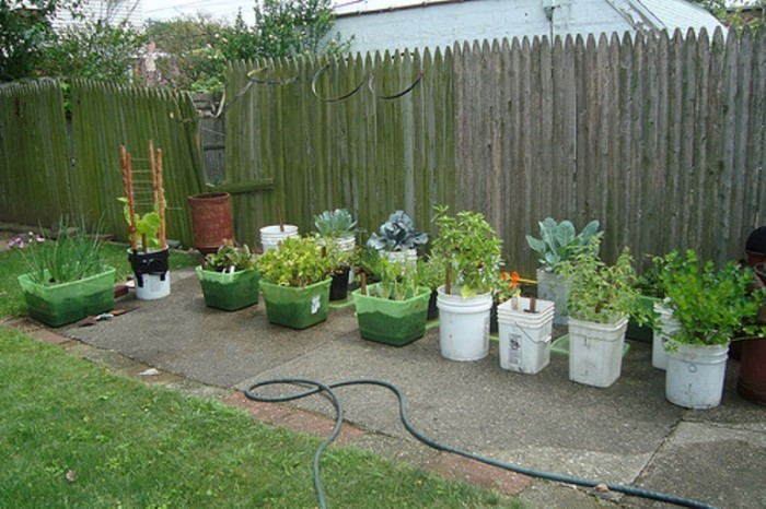2. A Garden is a Need