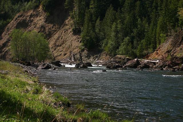 7) Alder Flat, Clackamas River