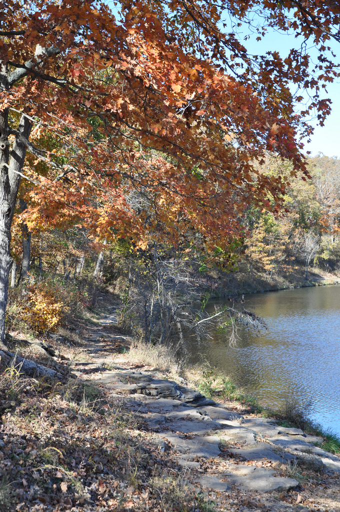 3. Cuivre River State Park-Lincoln