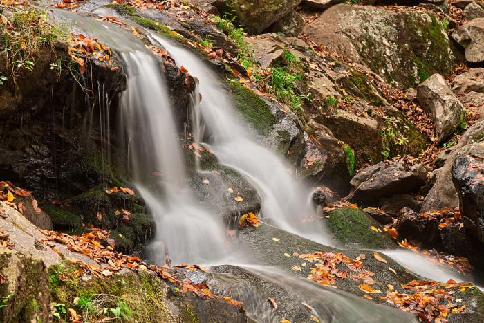 11. Dark Hollow Falls in Shenandoah National Park