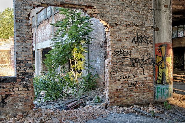 6) Detroit Ruin Tour Guide