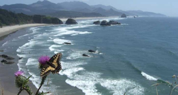 12) Ecola state park