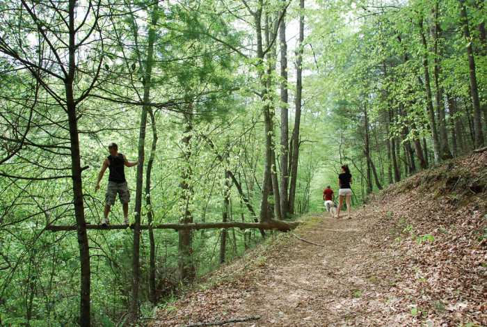 Fairy Stone trail