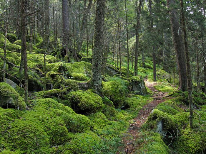 13) Hiking, anyone?