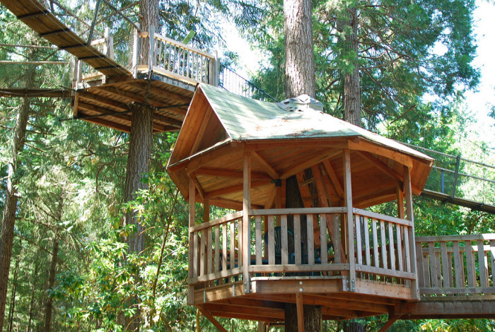 11) Need a perfect bird's-eye view? Look no further than this gazebo, perched high up in the canopy.