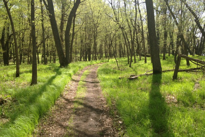 6 Glendalough State Park in western MN offers some great hikes  like this Battle Lake Trail.
