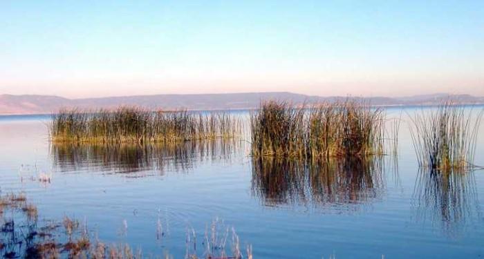 10) Goose Lake State Recreation Area