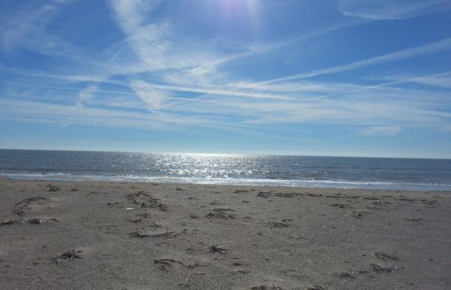 12) Holly Beach, Cameron, LA