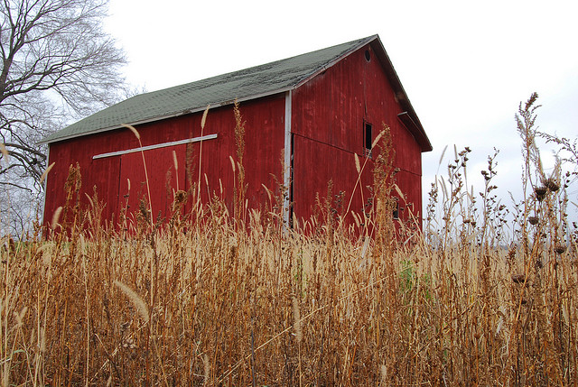 11) Red Barn in Howell